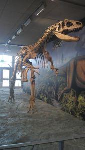 Rawr!! Dinosaur!
