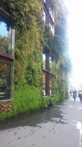 Buildings with walls made out of plants