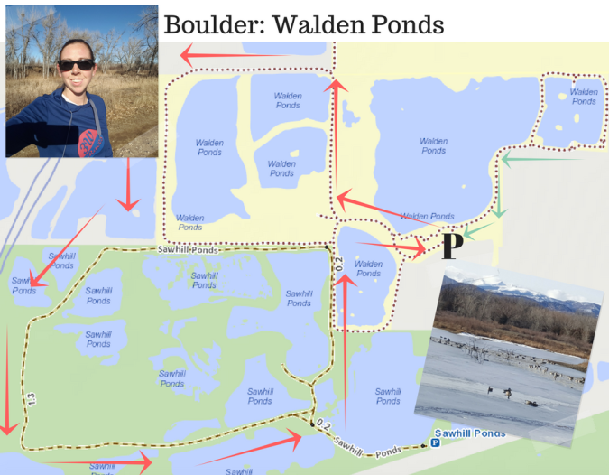 boulder-walden-ponds