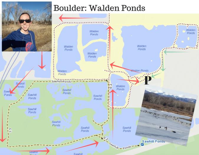 boulder-walden-ponds